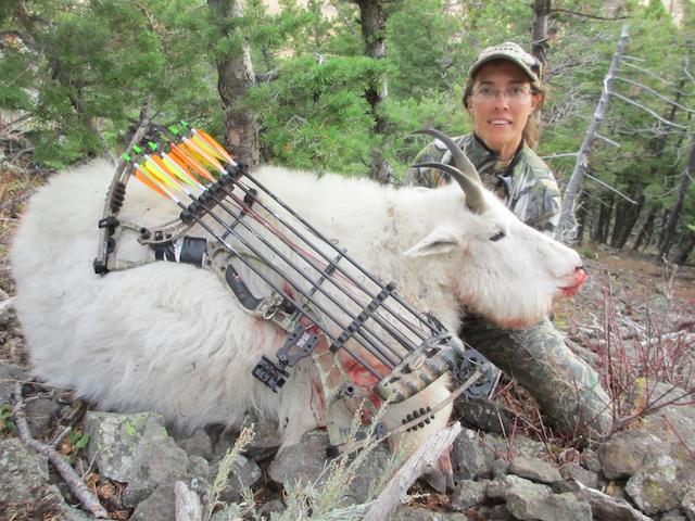Amy LePage Goat