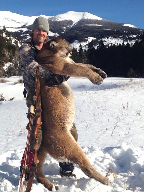 Brian Koelzer 2016 Mountain Lion