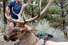 Mike-Prater-2019-Elk