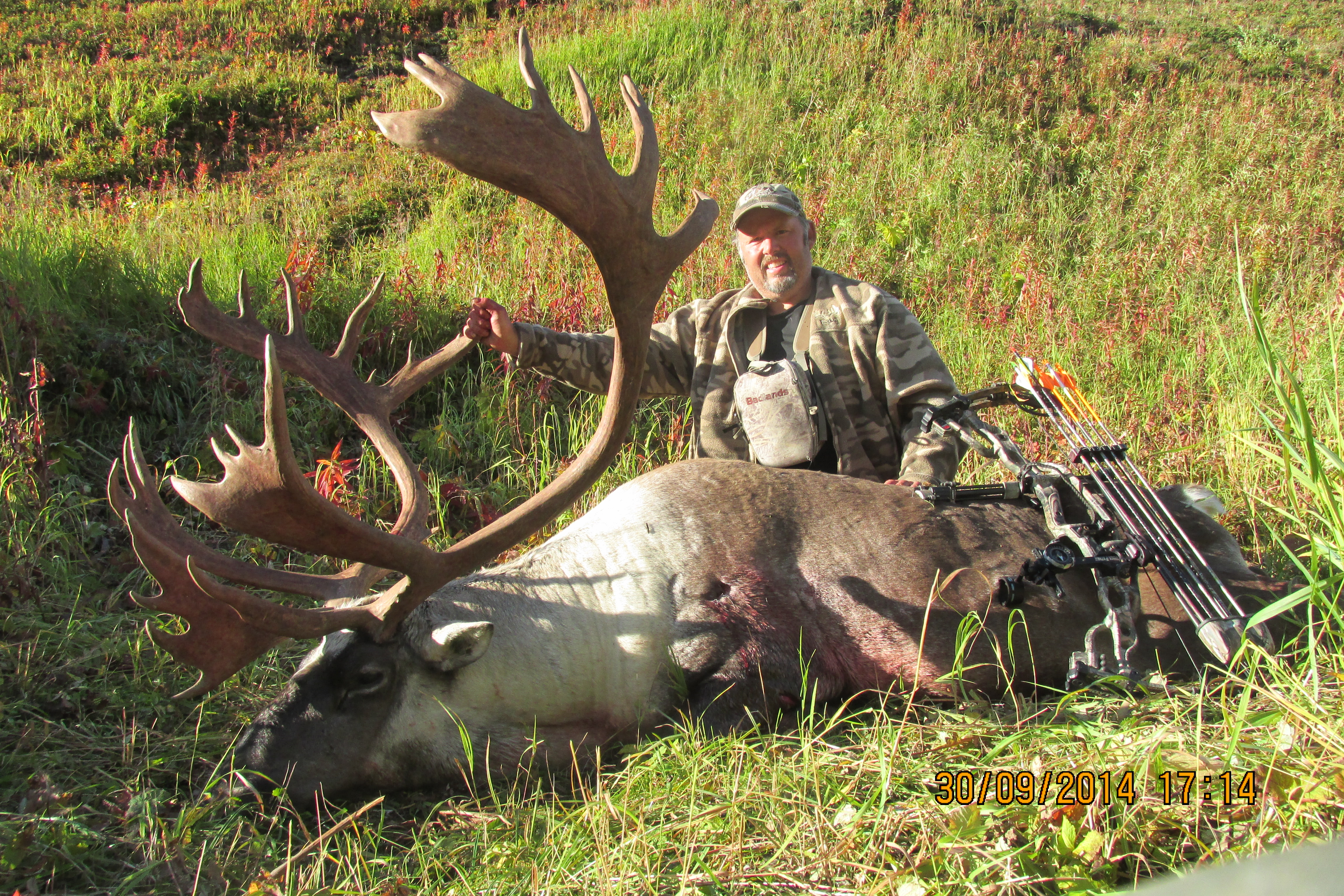 Old Info | Montana Bowhunters Association